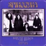 Burn the Bridges - Spirogyra