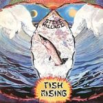 220px-Steve_Hillage_Fish_Rising