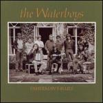 Fisherman's_Blues_Waterboys_Album_Cover